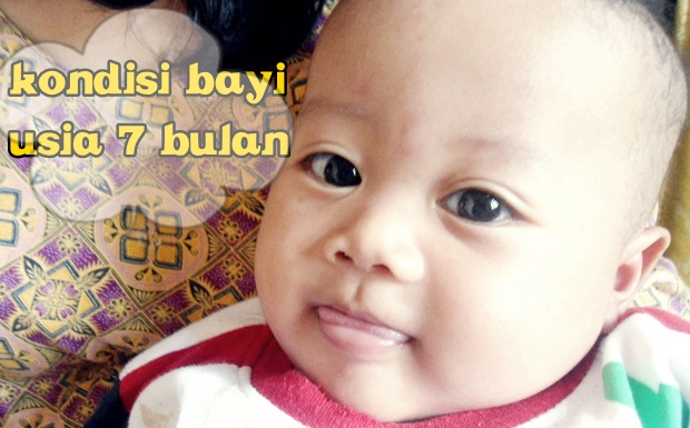 bayi 7 bulan